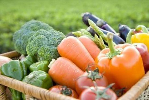 Alimentación orgánica, alimentación responsable
