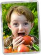 Alimentación Orgánica: ¿Por qué ayuda a mantenernos sanos?