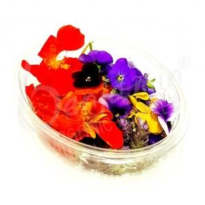 Flores Mix
